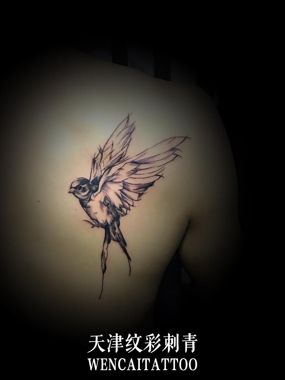 焦先生的孩子很喜欢飞鸟,为了迎合自己孩子的喜好,所以他被迫在自己的后背纹了这个飞鸟的图案。当然啦,他自己的内心对于飞鸟这个图也是不排斥的,不然的话他也不会这么开心的就纹了。