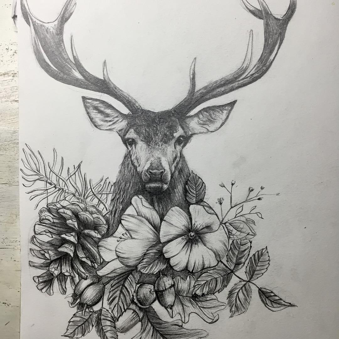 麋鹿素描创意画