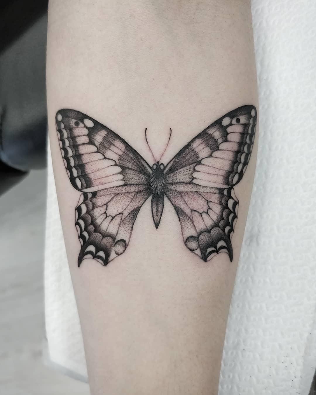 小臂黑灰蝴蝶纹身图案